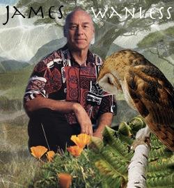 ジェームスワンレス